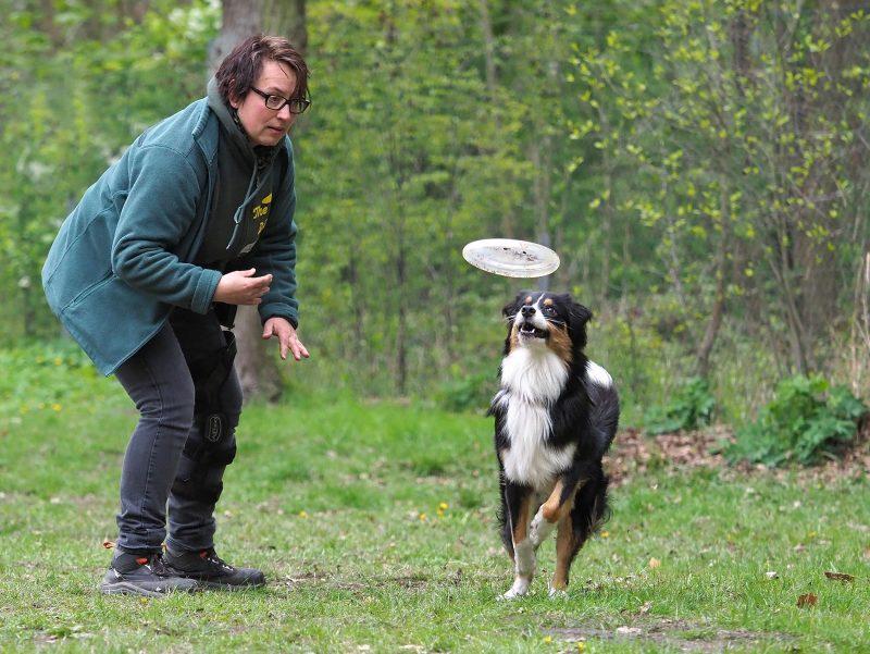 Hundeschule Bruns - Foto: Anett Seidensticker